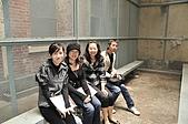 00981115香港三日行:DSC_3800.jpg