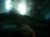 2007.10.09 UNDERWATER WORLD:1741646303.jpg