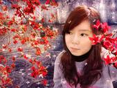 photoshop作品:棉如飛雪.jpg