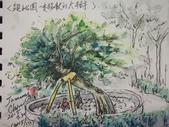 2015年7月 / 生活速寫。手繪日記:2015/ 333  淡彩速寫:親子公園倚著拐杖的大樹