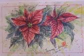 我手繪的耶誕卡。與名片。卡片:2014.手繪卡片1