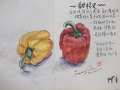 2019每日一畫 / 生活速寫【1至3月】:20190227 淡彩 / 甜椒