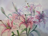 2015和2016年在畫室 與咖啡館或戶外寫生教學:2016.3/12 我的作品淡彩速寫  示範圖 百合花
