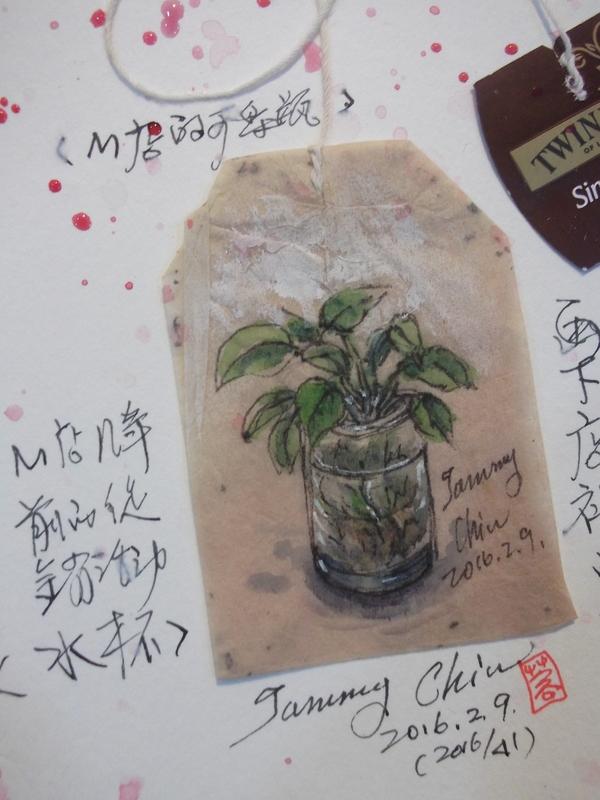 茶包畫 / 用過的茶包畫小插圖:2016 / 041 淡彩茶包畫:瓶中黃金葛