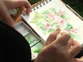 2015和2016年在畫室 與咖啡館或戶外寫生教學:學生 / 秋燕 專注畫畫的側拍