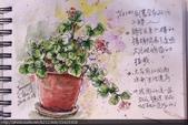 2014年我的生活速寫 / 圖畫日記:淡彩速寫 / 牆角盆栽