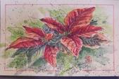 我手繪的耶誕卡。與名片。卡片:2014.手繪卡片2