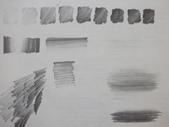 啡畫不可 / 教學繪畫紀錄:色鉛筆替代2B鉛筆畫色階、筆觸、明暗(學生的參考圖檔)