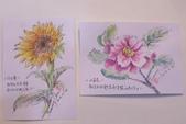 2014年我的手繪明信片《2》:10份手繪明信片2張