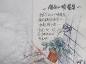 2019每日一畫 / 生活速寫【1至3月】:20190331 淡彩 / 牆角螃蟹蘭