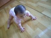 Baby家族:爬行〈預備〉