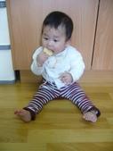 Baby家族:我會自己拿餅乾吃