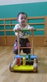 Baby家族:推步車