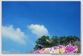 2008.11.05大溪花海農場外拍:1671282763.jpg