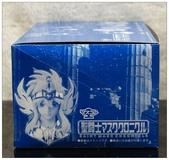 聖鬥士星矢胸像組:DSC_0650.JPG