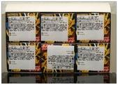 聖鬥士星矢胸像組:DSC_0654.JPG