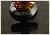 聖鬥士星矢胸像組:DSC_0658.JPG