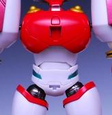 SR超合金 真蓋特1號 OVA版:DSC_0396.JPG