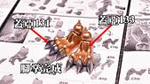 數碼寶貝-戰鬥暴龍 製作全紀錄:_DSC2168.JPG
