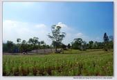 2008.11.05大溪花海農場外拍:1671282770.jpg