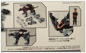 壽屋閃電豹初始模式(只不過多了組裝甲XD):DSC_0072.JPG