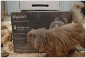 高科技產物DYSON DC22吸塵器:1778235611.jpg