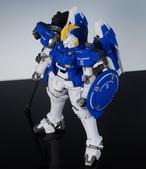 MG 托爾吉斯II:DSC_0570.JPG