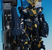 MG 1/100 報喪女妖:DSC_0547.JPG