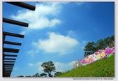 2008.11.05大溪花海農場外拍:1671282758.jpg
