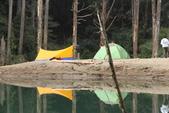 水漾森林:DPP_16.JPG
