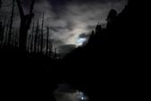 水漾森林:DPP_20.JPG