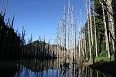 水漾森林:IMG_1787.JPG
