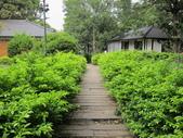 新竹中山公園:IMG_1662.JPG