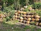 淡水休閒農場:CIMG0035.JPG