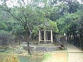 新山夢湖:P1080948.JPG