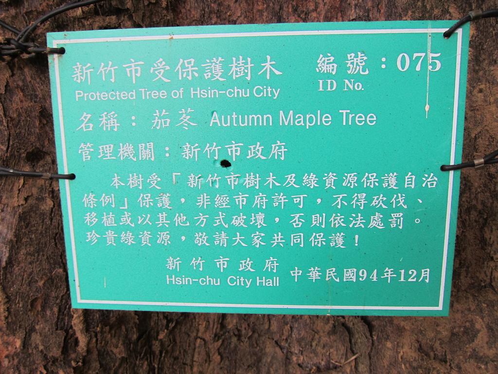 新竹中山公園:IMG_1676.JPG