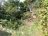 淡水休閒農場:CIMG0041.JPG