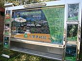 三富休閒農場 紫屋森林:CIMG2271.JPG
