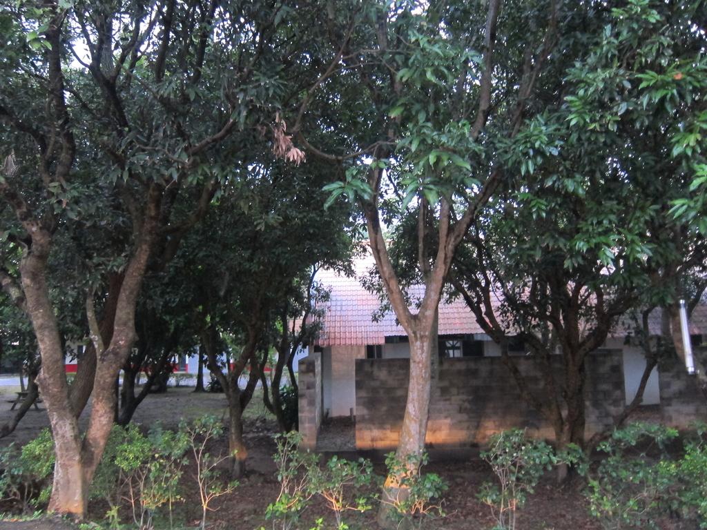 谷巴休閒渡假村:IMG_6177.JPG