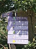 三富休閒農場 紫屋森林:CIMG2273.JPG
