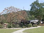 三富休閒農場 紫屋森林:CIMG2274.JPG