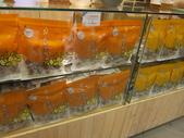 橘之鄉蜜餞形象館:IMG_4693.JPG