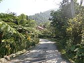 三富休閒農場 紫屋森林:CIMG2276.JPG