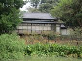 新竹中山公園:IMG_1650.JPG