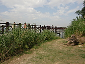 淡水休閒農場:CIMG0025.JPG