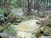 新山夢湖:P1080945.JPG