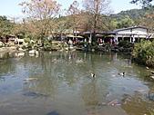 三富休閒農場 紫屋森林:CIMG2280.JPG