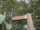 新竹中山公園:IMG_1656.JPG