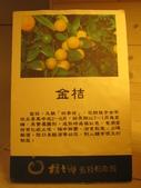 橘之鄉蜜餞形象館:IMG_4711.JPG