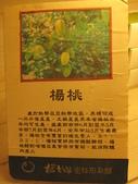 橘之鄉蜜餞形象館:IMG_4712.JPG